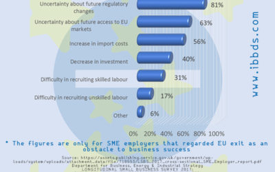 Reasons UK SME employers cited EU exit as an obstacle to success, Infographic by ibbds