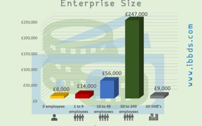 Median Profit Made by Small and Medium Enterprises (SME) in the United Kingdom (UK) in 2018, by Enterprise Size, Infographic by ibbds