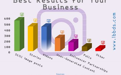 Types of Instagram Content that Have Produced the Best Results for Your Business, Infographic by ibbds